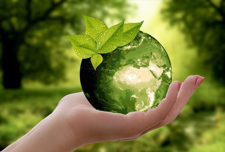 A Incorporação da Sustentabilidade nos Negócios